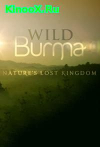 сериал Экспедиция в Бирму / Wild Burma: Nature's Lost Kingdom